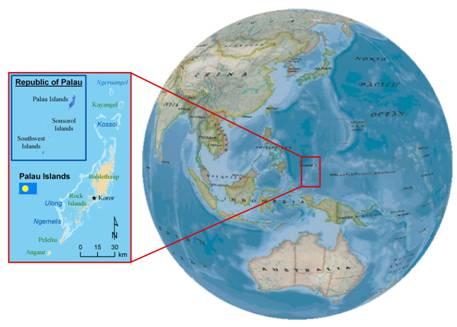 Nccos Republic Of Palau